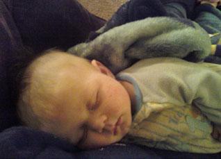 pip-sleeping
