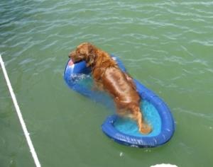 2-cobo floating 2