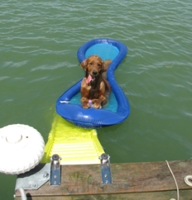 2-cobo on raft 1